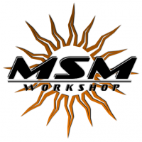 Msm Workshop