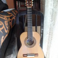 Requinto Mexicano. Profesional