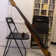 Electric doublebass for sale