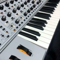 Moog Subsequent 37 CV Key Keyboard Synthesizer