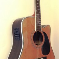 Zager ZAD 80CE/N Electro-Acoustic