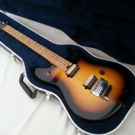 USA Peavey EVH Wolfgang Special